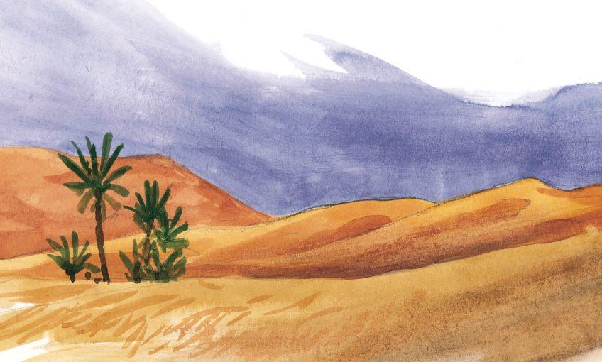 Quatrième étape d'un voyage en suivant les oiseaux migrateurs - La Salamandre dessin désert