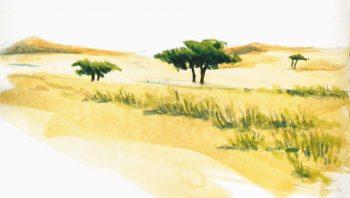 """""""Le Sahara se transforme en une…"""