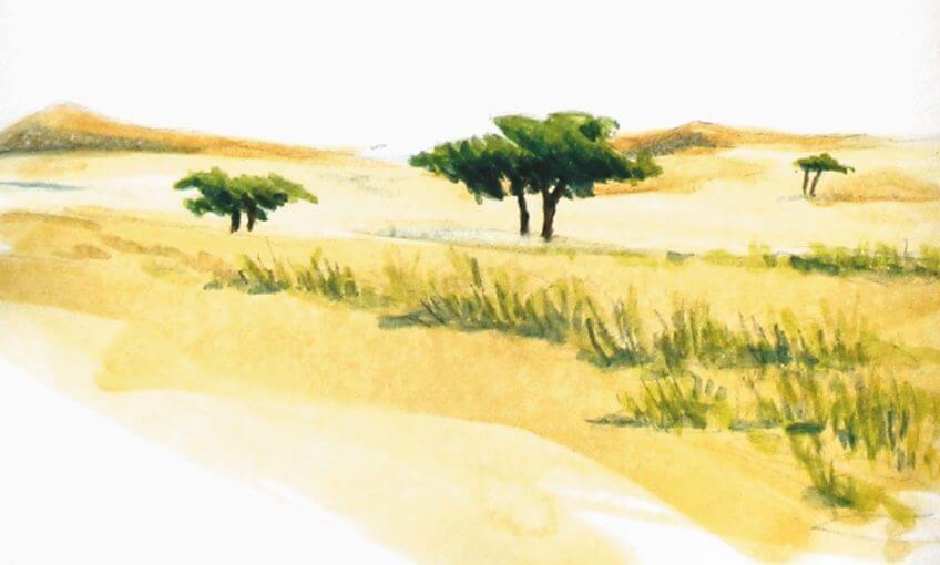 Sixième étape d'un voyage en suivant les oiseaux migrateurs - La Salamandre dessin arbre