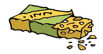 Bien préparer mon premier affût à chevreuil - La Salamandre dessin nourriture