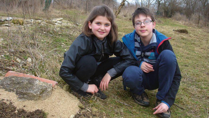 enfants Construire une nurserie à lézards - La Salamandre