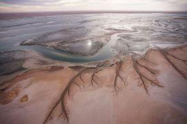 Au Sud, les fleuves dessinés par la mer dans les vasières infinies du Banc d'Arguin.  / © Jean-François Hellio & Nicolas Van Ingen