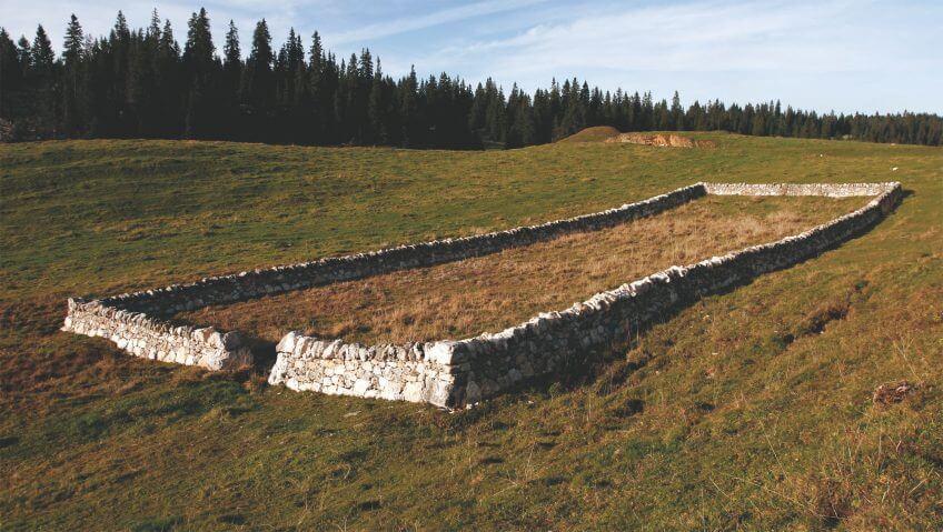 Les murs de pierres du canton de Vaud, des limites si claires - La Salamandre