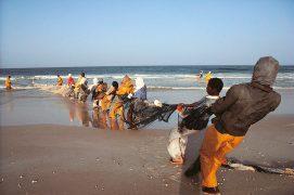 Des filets pour pêcher dans l'océan. / © Jean-François Hellio & Nicolas Van Ingen
