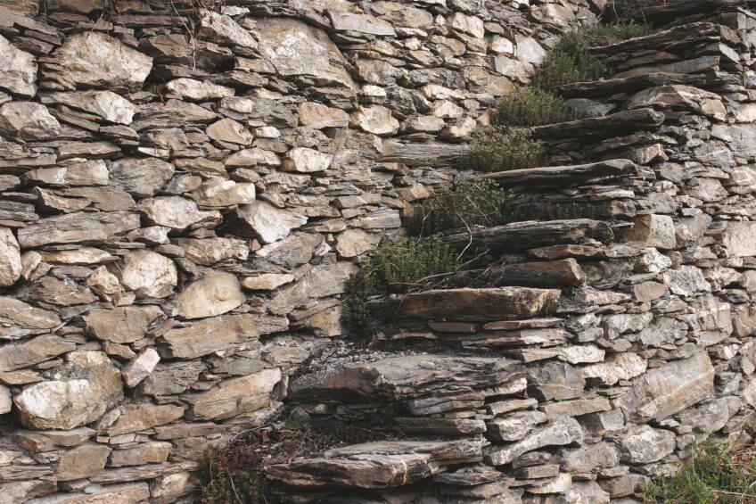 Soutenir les vignes - La Salamandre mur pierre escalier