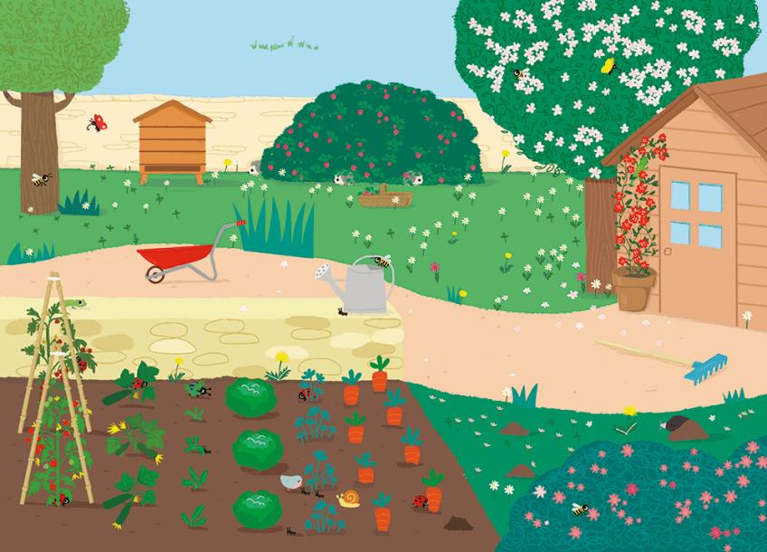 Un jardin-potager