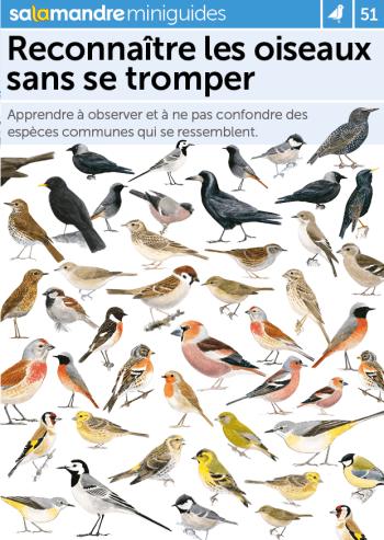 Miniguide 51 : Reconnaître les oiseaux sans se tromper
