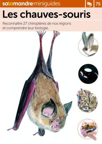 Miniguide 75 : Les chauves-souris