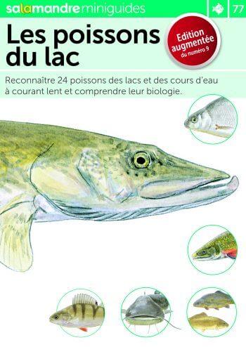 Miniguide 77 : Les poissons du lac