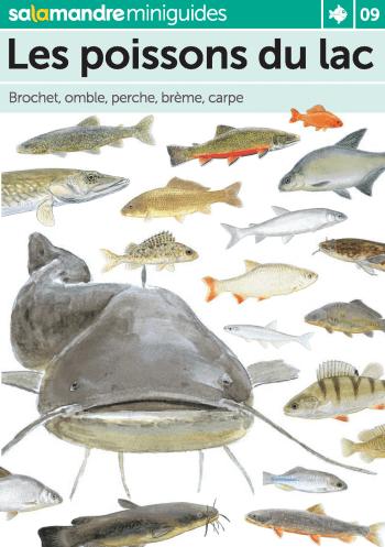 Miniguide 9 : Les poissons du lac
