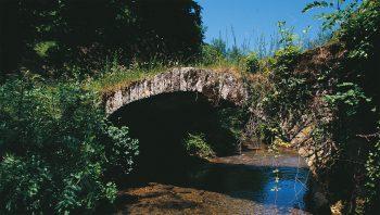 Situé en amont de Baume-les Messieurs, ce pont passe facilement inaperçu.