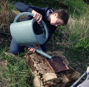 Fini les pannes sèches ? Comment construire un abreuvoir au jardin - La Salamandre