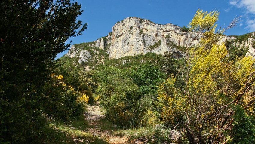 Balade dans le Vercors, que de vie à Lesperi! - la Salamandre paysage lesperi