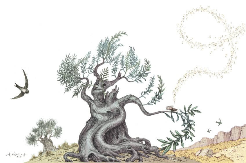La diva et le vieil arbre, ou la cigale et l'olivier - La Salamandre dessin ambroise héritier