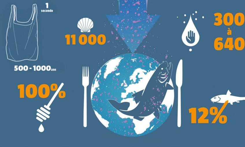 Microplastiques, méga fléau, infographie - La Salamandre infographie