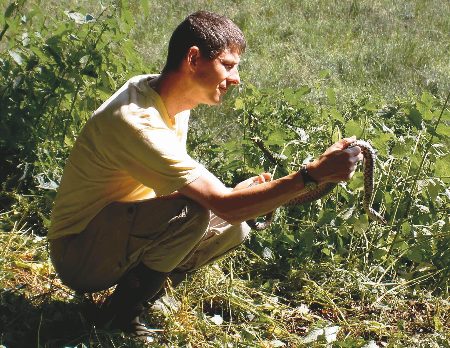 Couleuvre cherche compost - La Salamandre