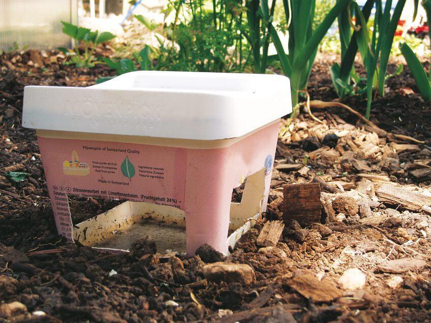 8 règles d'or pour un jardin à hérisson - La Salamandre