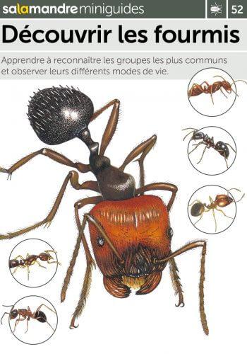 Miniguide 52 : Découvrir les fourmis
