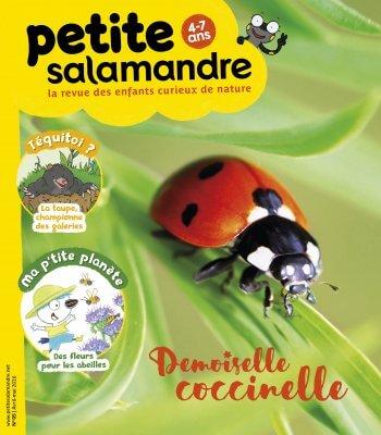 Couverture de La Petite Salamandre n°5