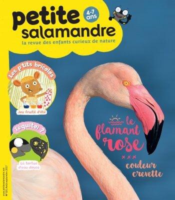 Couverture de La Petite Salamandre n°13
