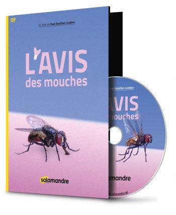 L'avis des mouches, un film de La Salamandre