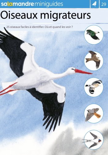 Miniguide 29 : Oiseaux migrateurs