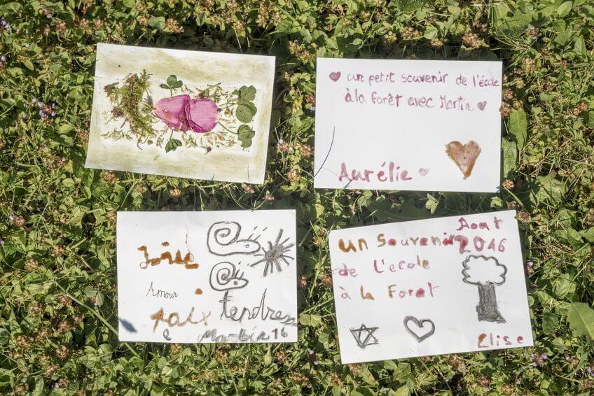 Des cartes postales écrites dans la nature.