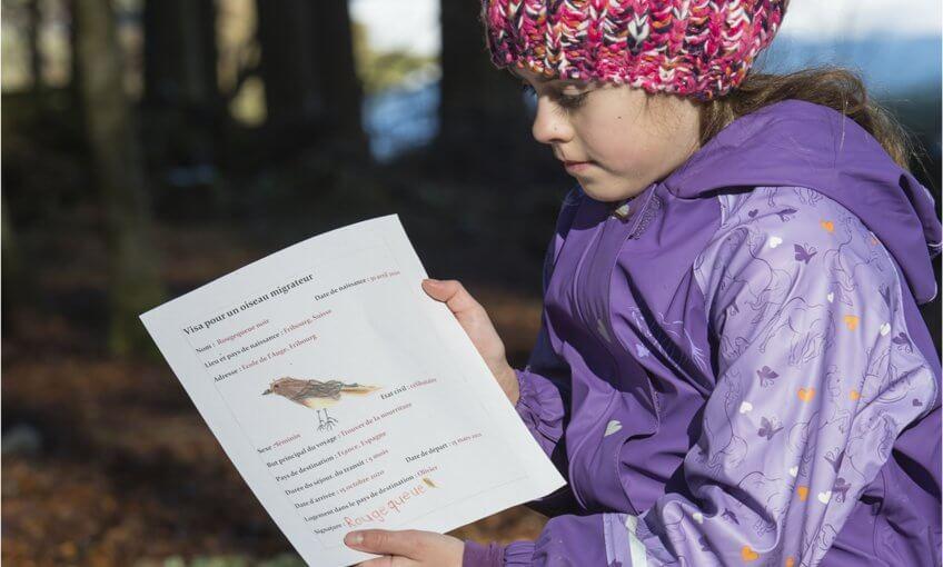 Une enfant réalise un visa pour les oiseaux migrateurs.
