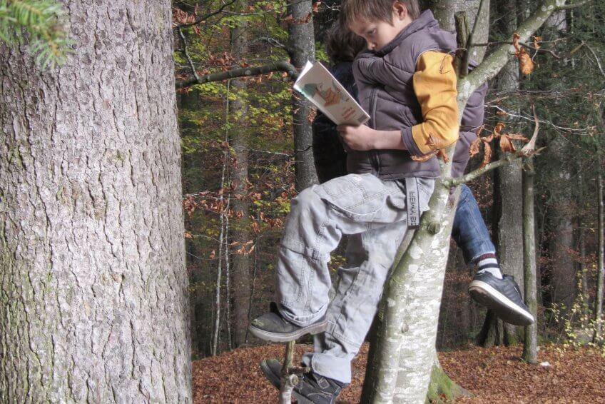 Enfant qui lit un livre sur un arbre.