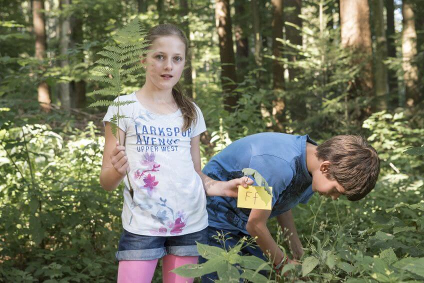 Des enfants cherchent des lettres dans la nature.