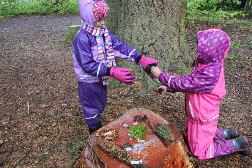Des enfants réalisent un marché sur une souche d'arbre.