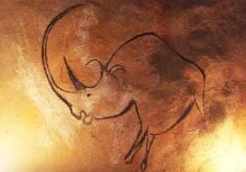 Reproduction sur le mur de la maison du rhinocéros à longue corne de la grotte Chauvet.