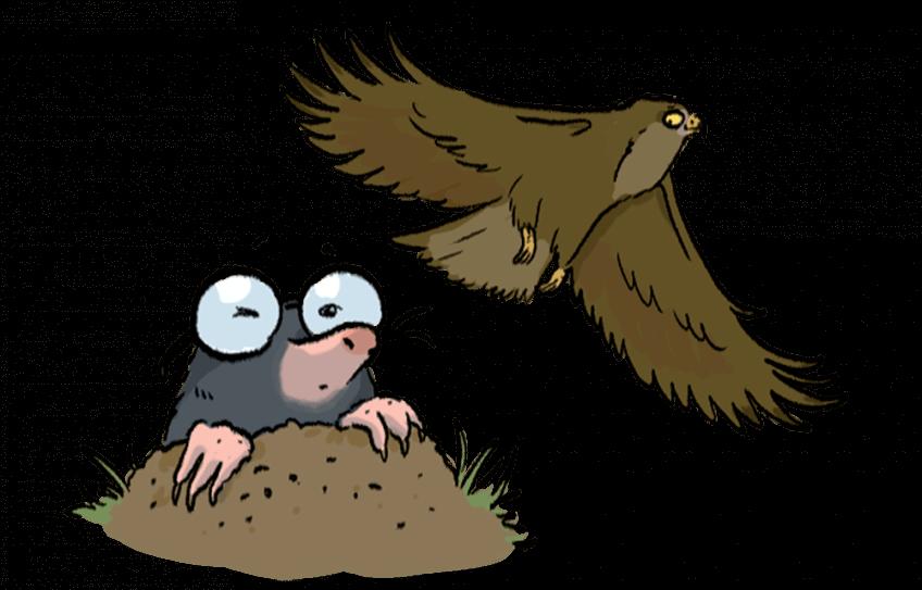 Illustration d'un aigle et d'une taupe à lunettes.