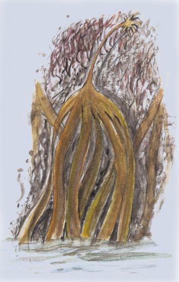 Marée: l'emprise des astres - La Salamandre