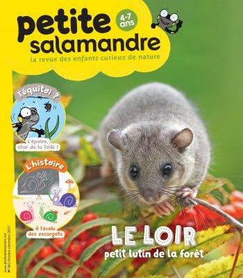Couverture de La Petite Salamandre n°14