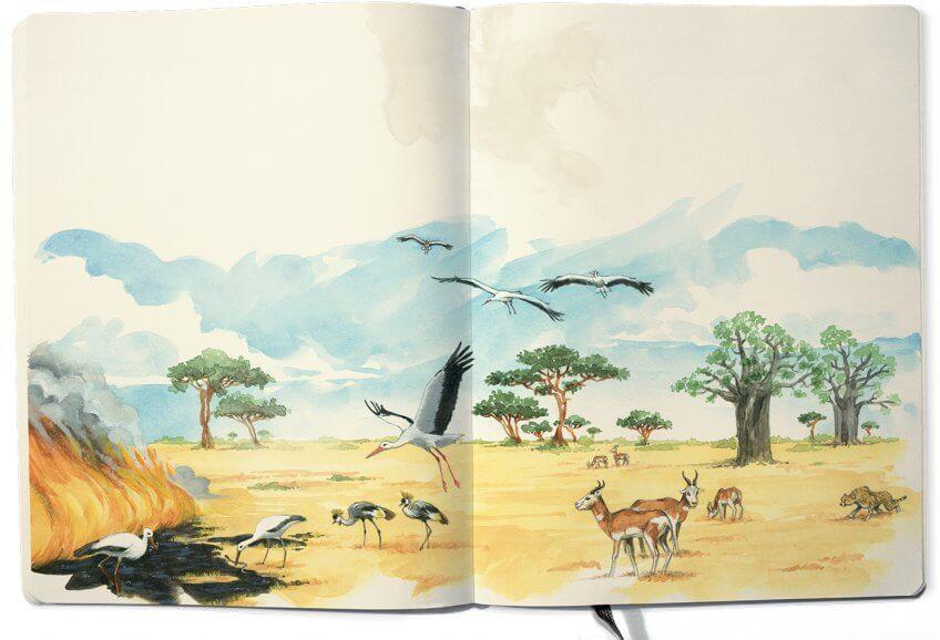 Cigognes dans la savane