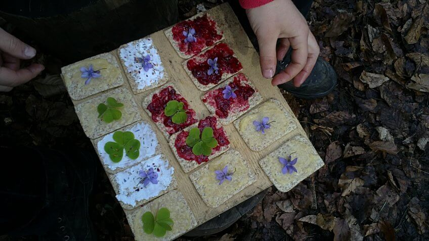 Des crackers aux plantes.