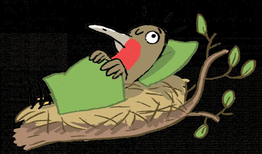 Oiseau qui s'endort dans un lit