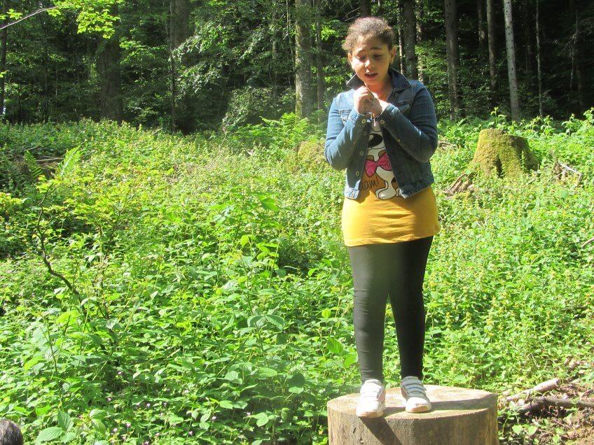 Forêt sinistrolugubre.