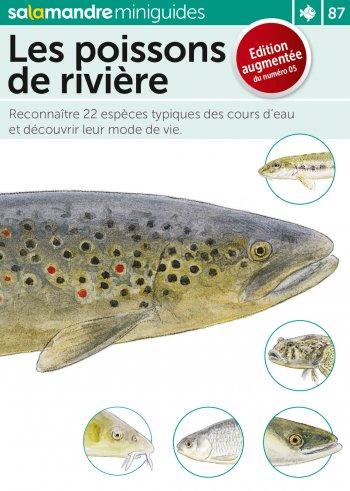 Miniguide : Les poissons de rivière - La Salamandre