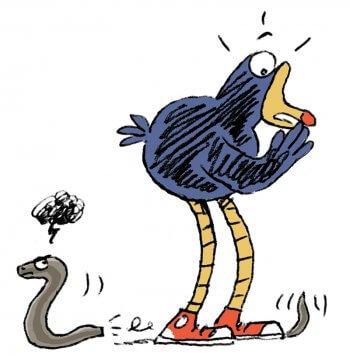 Pouldo marche sur l'orvet