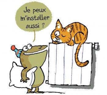 Crap et le chat domestique