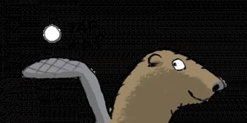 Le castor se faisant un ping-pong