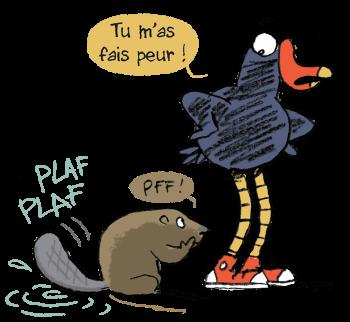 Castor et Pouldo