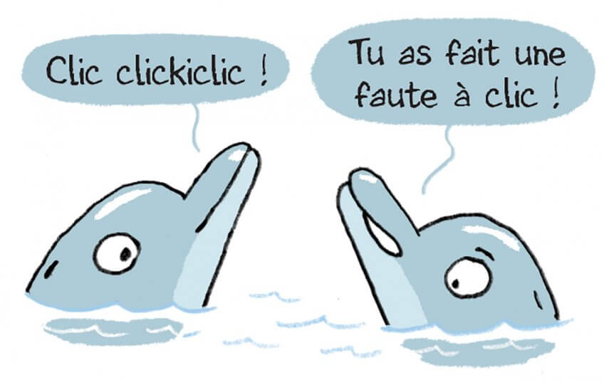 Discussion de dauphins