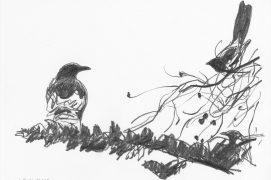 Sur le quai de la gare, j'aperçois en face les mouvements nerveux de deux pies qui jacassent au sommet d'un grand pin. Juste au dessous, posée au bout d'une branche, la corneille ne bouge pas. Les pies n'apprécient pas cette grande cousine et font ce qu'elles peuvent pour l'empêcher d'approcher du nid. La Baule, 29 juin 2015, barre de graphite sur papier Canson.