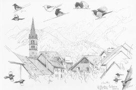 On la retrouve partout, ou presque. En montagne, la pie peut nicher dans les hautes vallées, près des villages en particulier. Le Monetier-les-bains (1500 m d'altitude), 27 juin 2017, crayon graphite sur papier Canson.