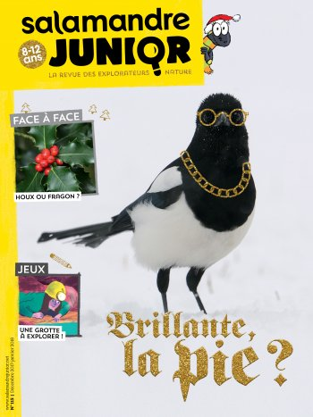 Couverture de La Salamandre Junior n°115