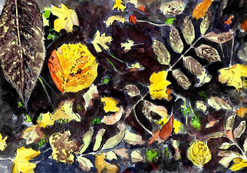 Retour à la terre pour les feuilles de la haie - La Salamandre