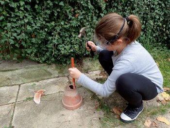 Fabriquez un nichoir à rougegorge avec un pot de fleur